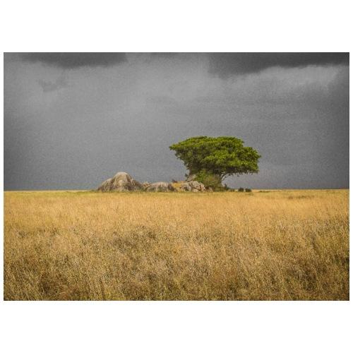 Serengeti Storm Tree - Men's Premium T-Shirt