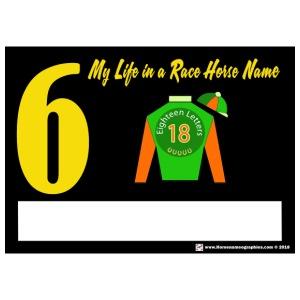 My Race Horse Name: Saddle Cloth #6 - Men's Premium T-Shirt