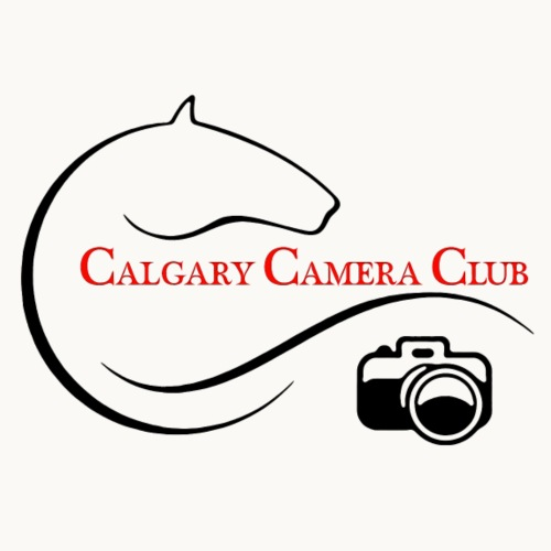 Calgary Camera Club - Carolyn Sandstrom - Men's Premium T-Shirt