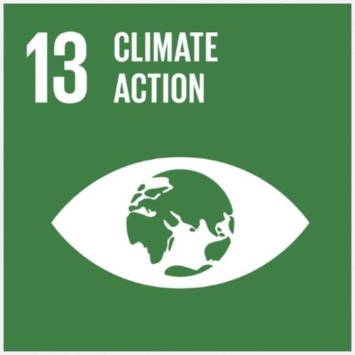 Goal 13 climate action - Men's Premium T-Shirt