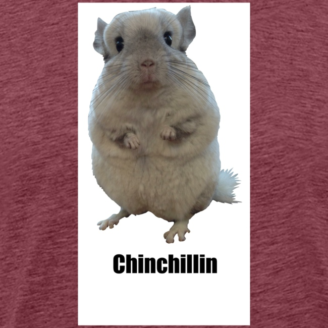 Chinchillin 1 png