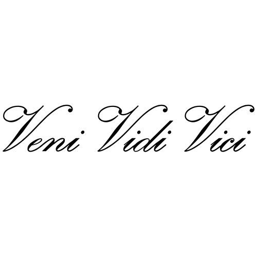 Zyzz Veni Vidi Vici Calli text - Men's Premium T-Shirt