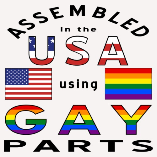 Assembled USA Gay Parts - Men's Premium T-Shirt