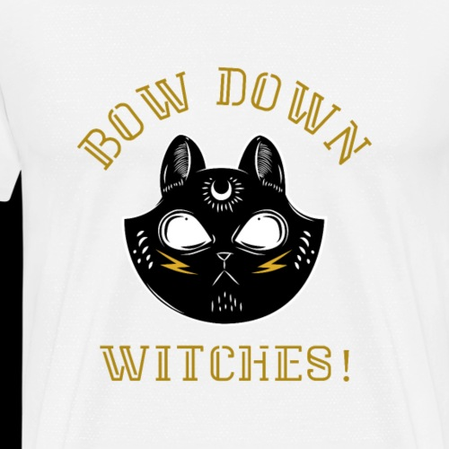 Bow Down Witches | Wicked Black Cat - Men's Premium T-Shirt
