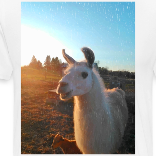 Tony the Llama Vintage Photo - Men's Premium T-Shirt