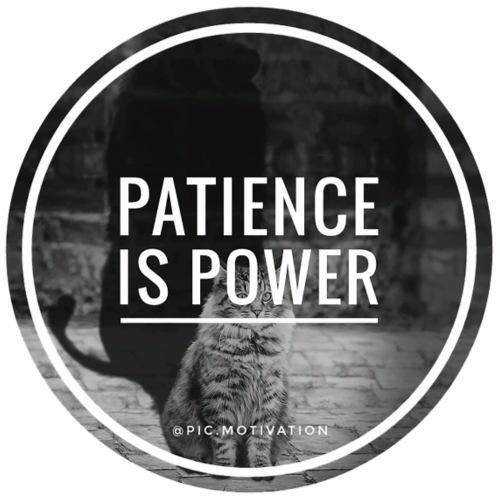 patience is power - Men's Premium T-Shirt