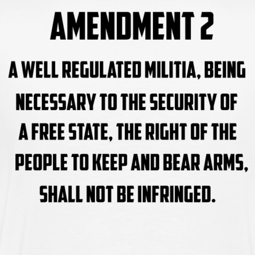 2 AMENDMENT - Men's Premium T-Shirt