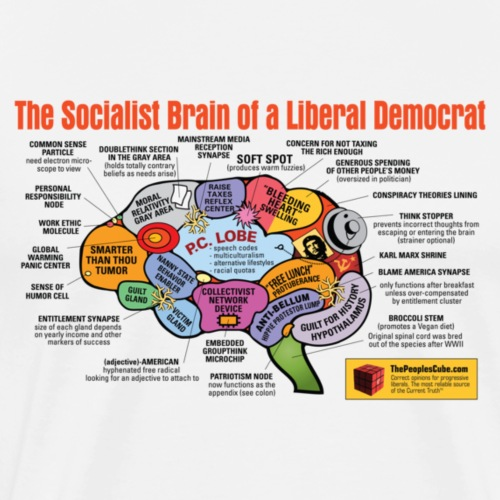 Brain of a Liberal Democrat - Men's Premium T-Shirt