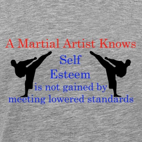 A Martial Arts Knows #1 - Kicks - Men's Premium T-Shirt