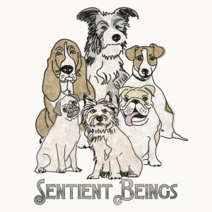 DOGS-SENTIENT BEINGS-white text-Carolyn Sandstrom - Men's Premium T-Shirt