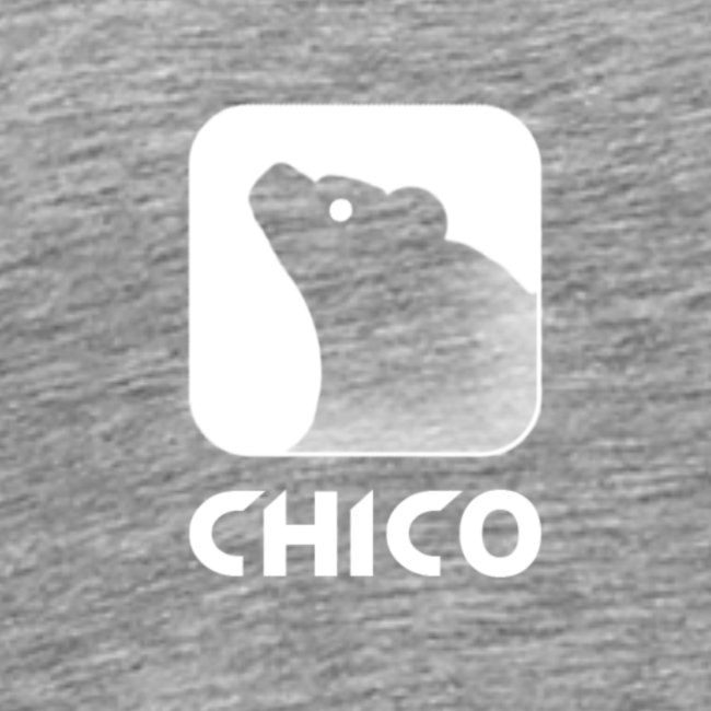 Chico's Logo with Name