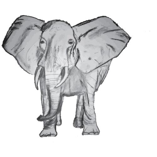 Big Elephant - Men's Premium T-Shirt