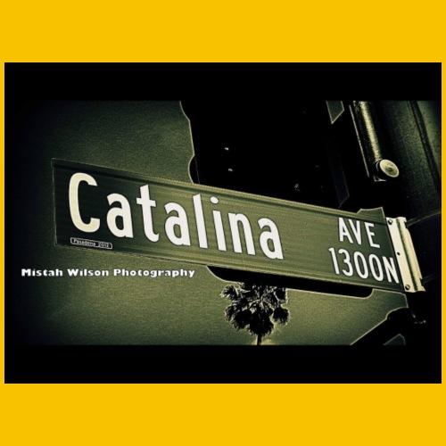 1300 N. Catalina Avenue, Pasadena, CA by MWP - Men's Premium T-Shirt