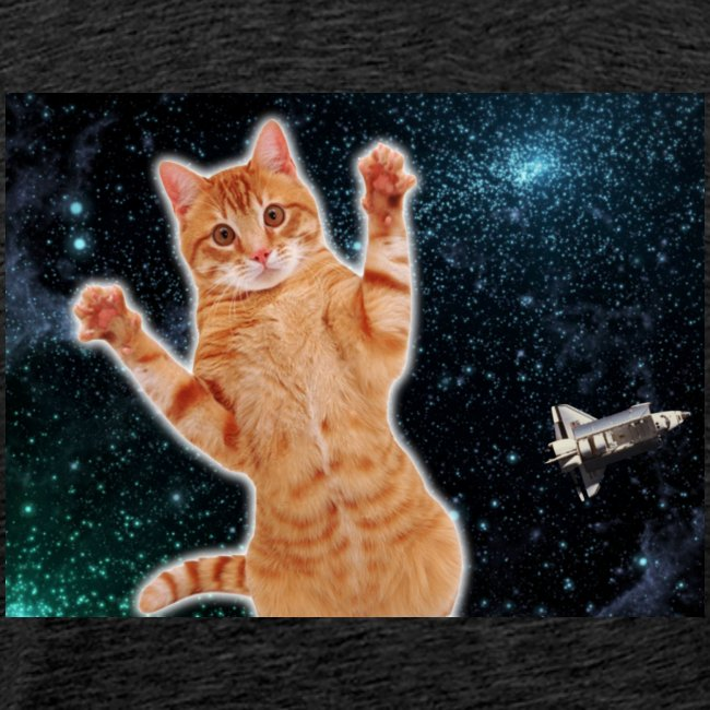 Cat in Deep Space