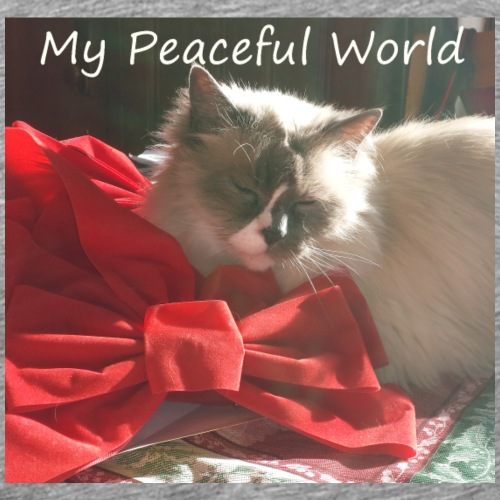 My Peaceful World - Christmas - Men's Premium T-Shirt