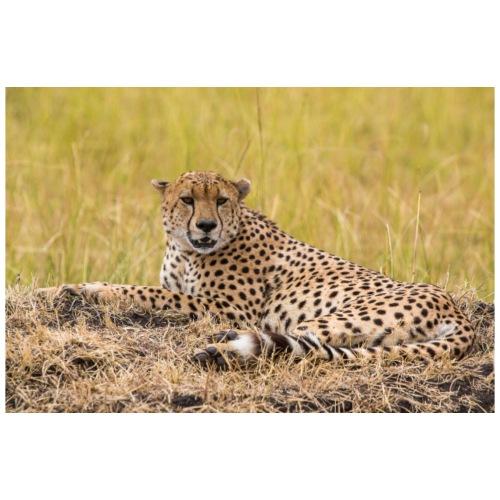 Lazy Cheetah - Men's Premium T-Shirt