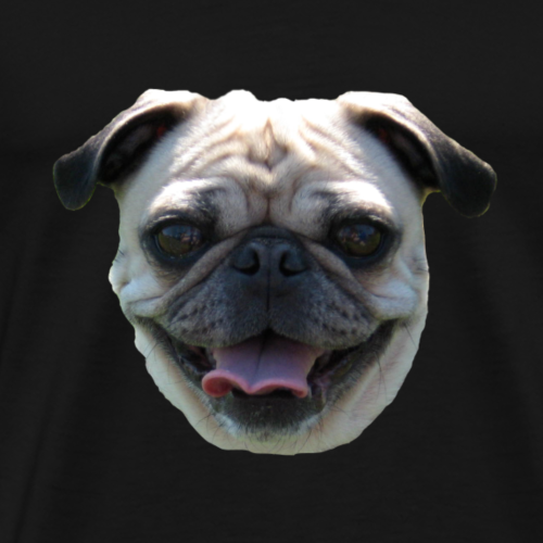 maisyface4 - Men's Premium T-Shirt