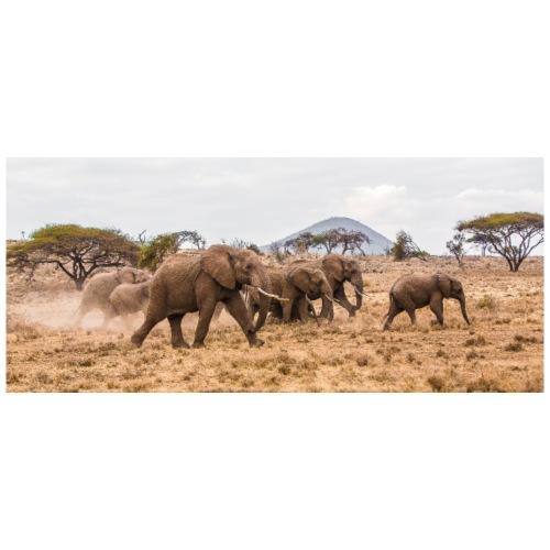 African Elephant Herd - Men's Premium T-Shirt