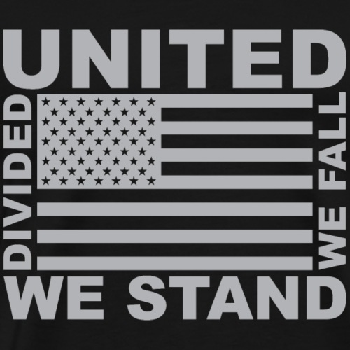 Divided We Fall - Men's Premium T-Shirt