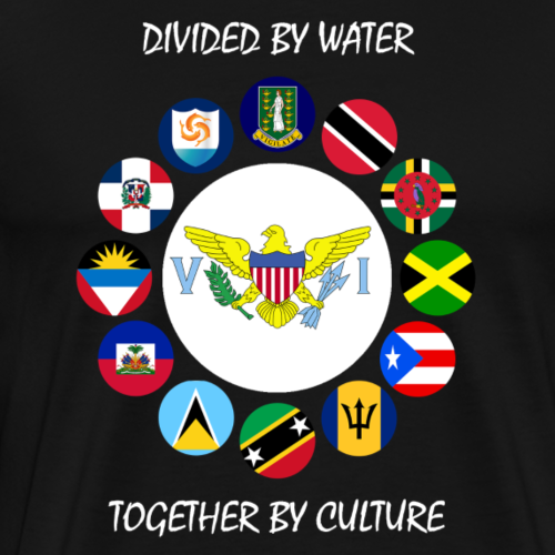 Virgin Islands Crest - Men's Premium T-Shirt