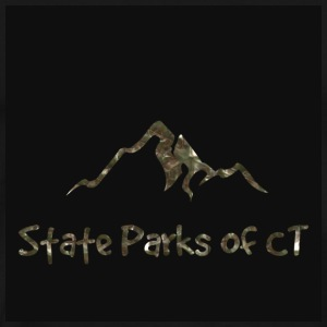 black mountain logo - Men's Premium T-Shirt