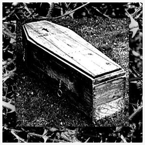 Coffin Of Splinters - Men's Premium T-Shirt
