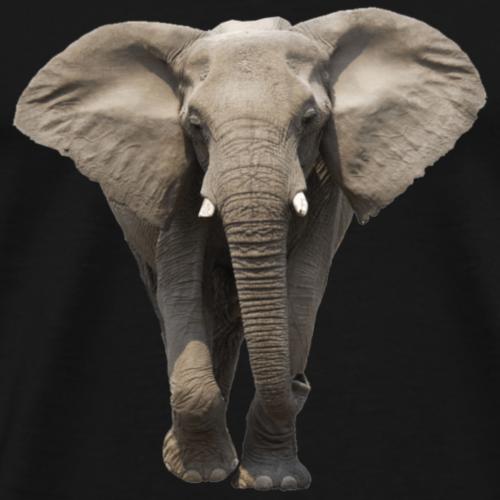 elephant front transparent image - Men's Premium T-Shirt
