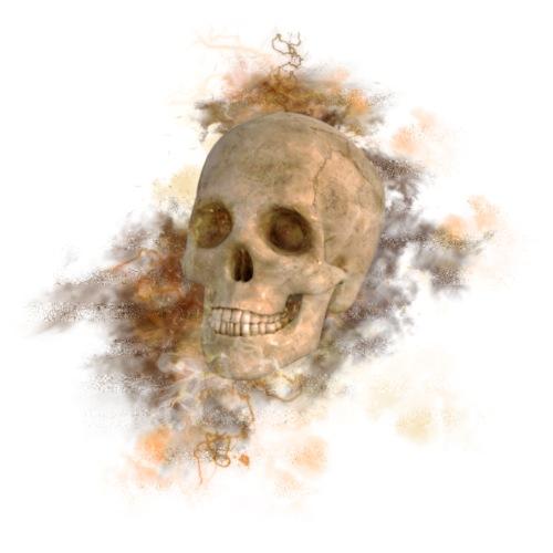 smoke skull test - Men's Premium T-Shirt