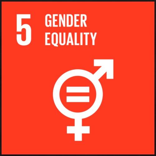 Goal 5 Gender equality - Men's Premium T-Shirt