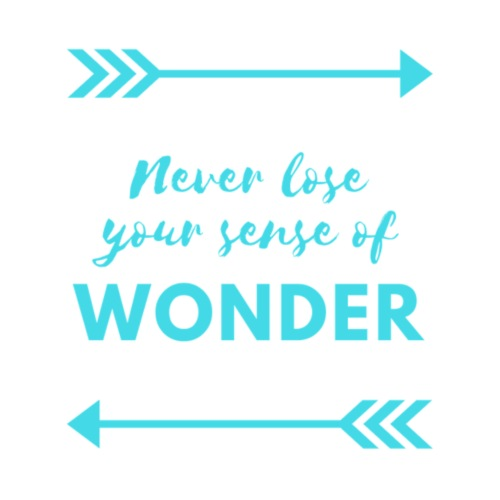 Never Lose Your Sense of Wonder - Men's Premium T-Shirt