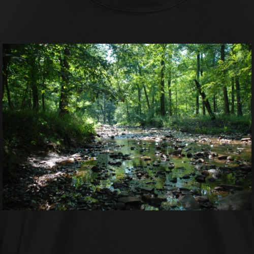 Cool Nature Photo 01 - Men's Premium T-Shirt