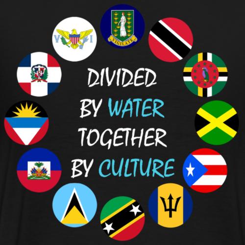 Island Crest - Men's Premium T-Shirt