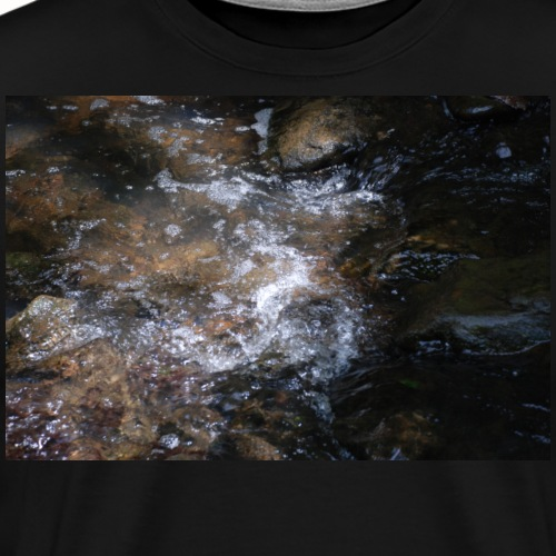 Nature Photo 16 - Men's Premium T-Shirt