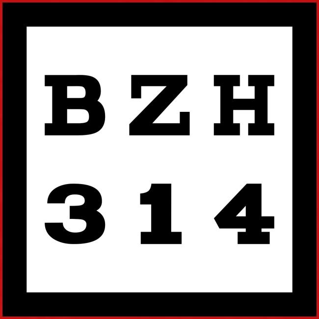 BZH314 Games Small Logo