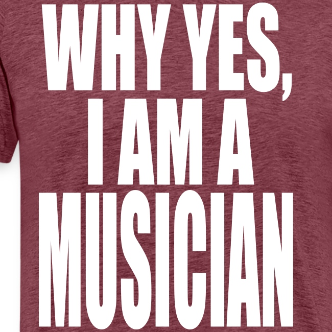 WHY YES I AM A MUSICIAN