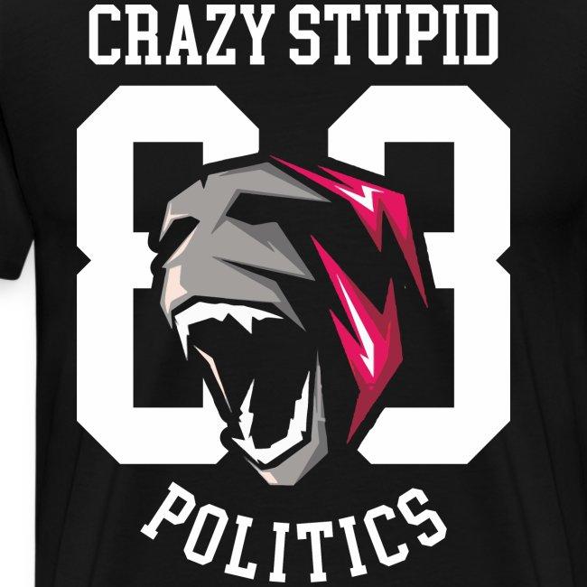 stupid politics
