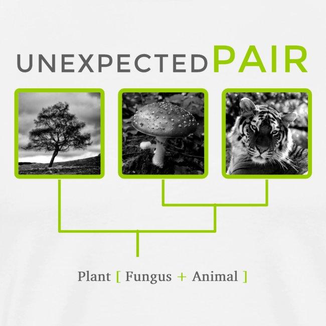 Unexpected pair
