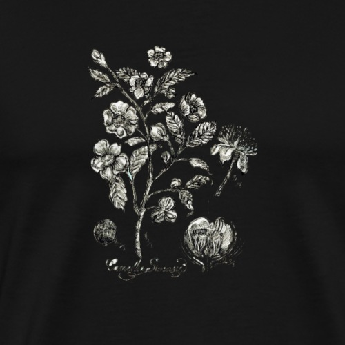 Tea Plant botanical illustration - Men's Premium T-Shirt