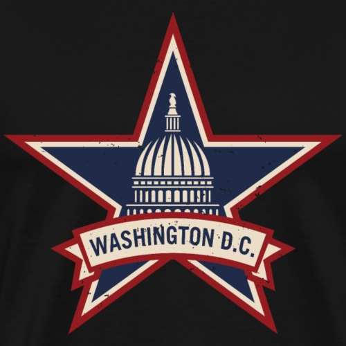 Washington D.C. Vintage Style Logo - Men's Premium T-Shirt