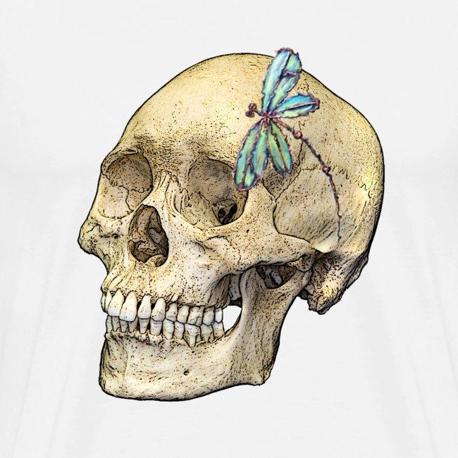 Skull & Dragonfly
