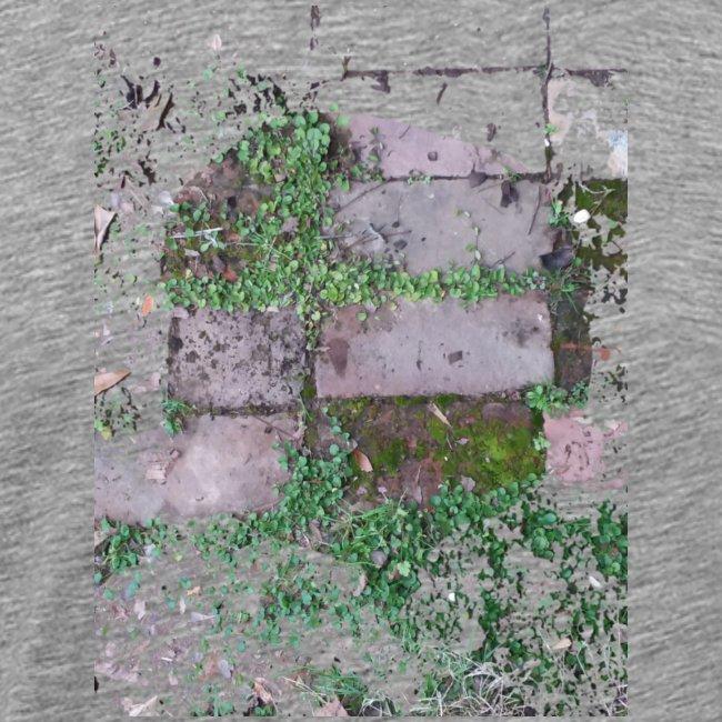 Bricks and nature
