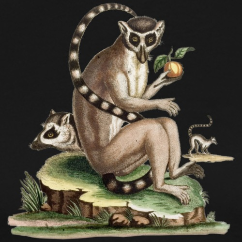 Lemur Artwork - Men's Premium T-Shirt