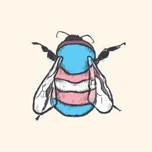Transgender Bee - Men's Premium T-Shirt