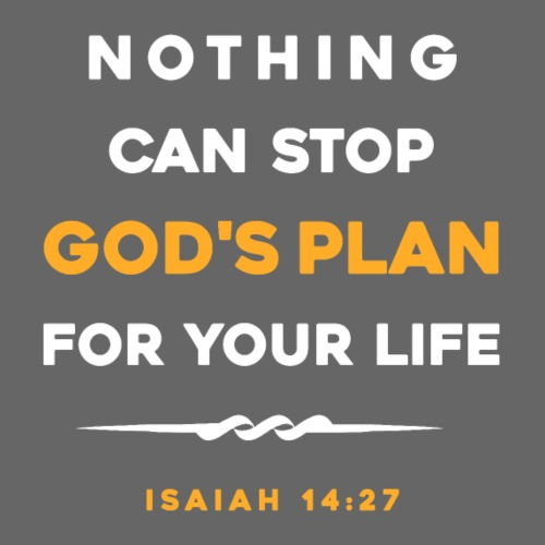 Nothing can stop God's plan for your life - Men's Premium T-Shirt