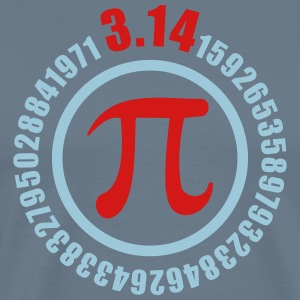 PiDAY - Men's Premium T-Shirt