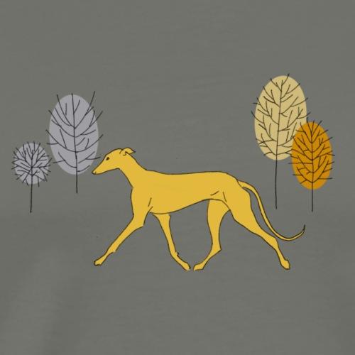 A yellow sighthound