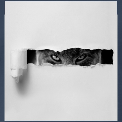 Cat sees you - Men's Premium T-Shirt