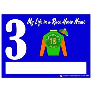 My Race Horse Name: Saddle Cloth #3 - Men's Premium T-Shirt