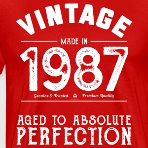 1987 Aged To Perfection 30th Birthday Present - Men's Premium T-Shirt