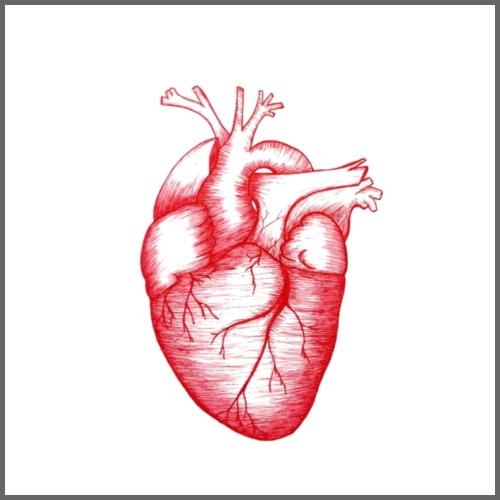 Anatomical Heart - Men's Premium T-Shirt